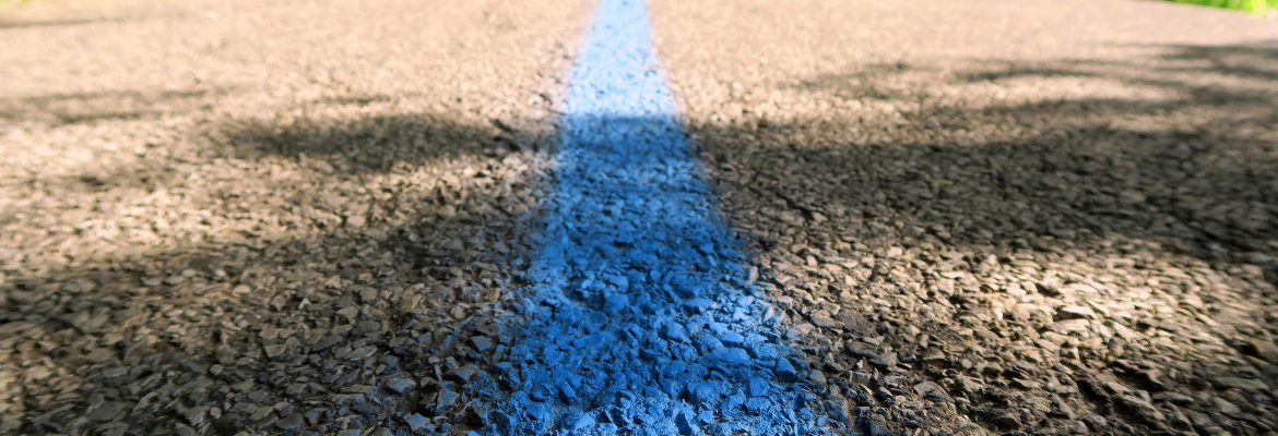 'Thin Blue Line' Painted In Staten Island Appears In Clove Lakes Park